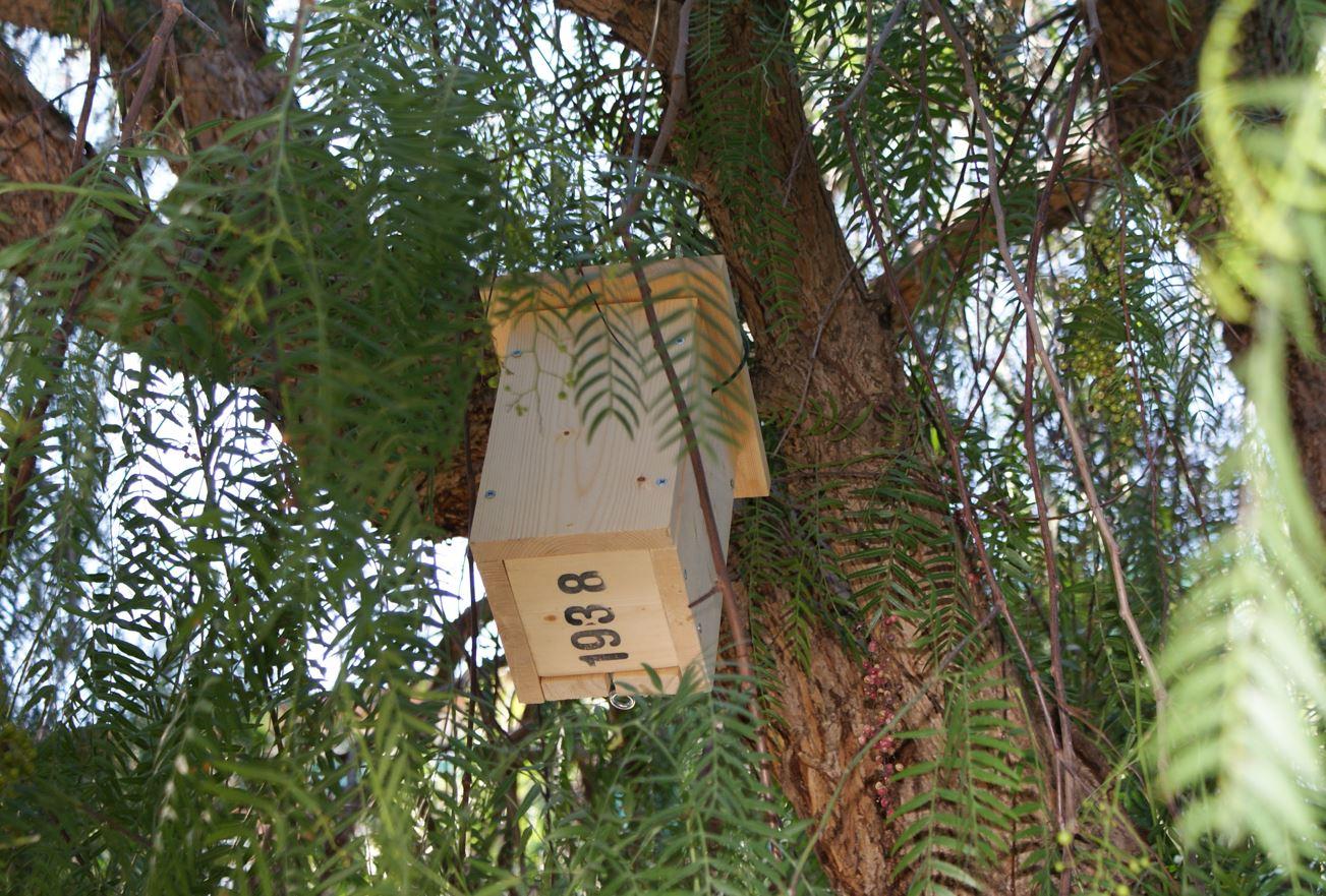 Jugatecambiental: A vista d'ocell