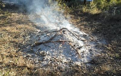 Imatge de la notícia: Campanya per a la prevenció d'incendis forestals